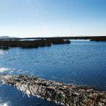lago-titicaca-bote